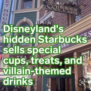 Starbucks Other - STARBUCKS DISNEYLAND VENTI-SIZE PLASTIC TUMBLER